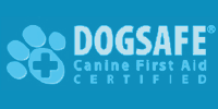dog walker certificado primeiros socorros dog safe